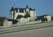 Puzzle Château d' Usseau