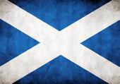 Puzzle Scottish flag