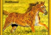 un cheval tigre