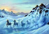Dali chevaux de glace