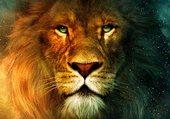 lionduciel