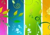 wallpaper color