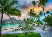 Puzzle paradis sous les nuages