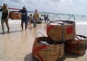 Puzzle Les pêcheurs de Bali