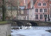 Bruges l'hiver