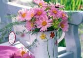 fleurs roses par hélène