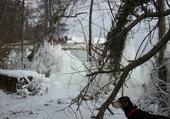 Benji au  bord du lac