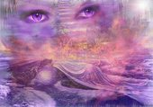 voilee en violet