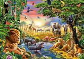 Tous les animaux de la jungle en une photo