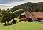 Emmental a la ferme Suisse
