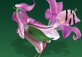 Fleur_animal