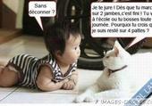 Puzzle bébé+chat