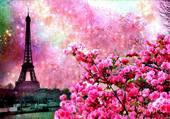 Puzzle PARIS EN FLEURS