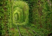tunnel of dream
