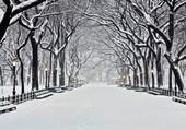 Hyde Park sous la neige