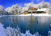 L'étang sous la neige