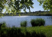 Le Lac de Bonlieu Jura