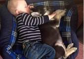 Bébé et chiot