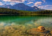 Forêt en bordure du lac