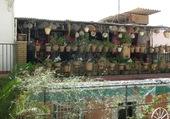 Terrasse à Malaga