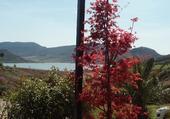Auberge du lac de Dalagou