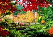 Un jardin japonais