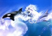 orque, licorne, dauphin