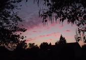 nuages roses au couchant