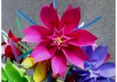 Origami coloré