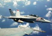 F5F en vol