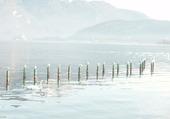 A chacun son piquet - Lac d'Annecy