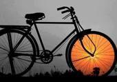 un vélo avec une roue en or