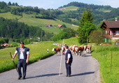Mitteland Suisse