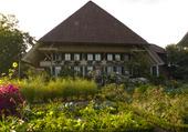 Ementhal Suisse