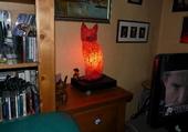Chat rouge de Noël