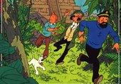 Tintin et les Picaros