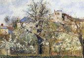 Pruniers en fleurs, Pontoise