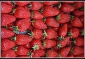 Des fraises pour le dessert.