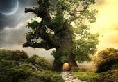arbre fantasy