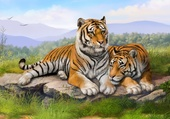 Couple de tigres