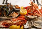 Dégustation des fruits de mer