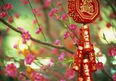 Puzzle Cerisier en Chine