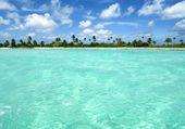 Puzzle Paradis sous les palmiers
