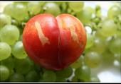 Peche et raisins