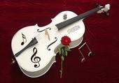 Une rose sur un violon