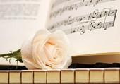 Quelques notes de musique et une rose