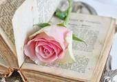 fleur et livre