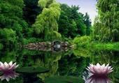 la nature zen