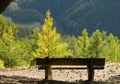 contemplation en automne