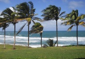 Anse Charpentier Martinique